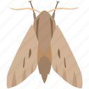 bug, codling, flying, gypsy, insect, moth, pest icon
