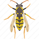 bite, bug, hornet, insect, pest, wasp, yellow jacket