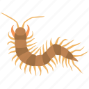 alien, arthropod, bug, centipede, gross, insect, millipede icon