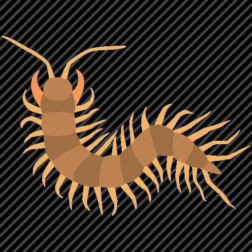 alien, arthropod, bug, centipede, gross, insect, millipede icon