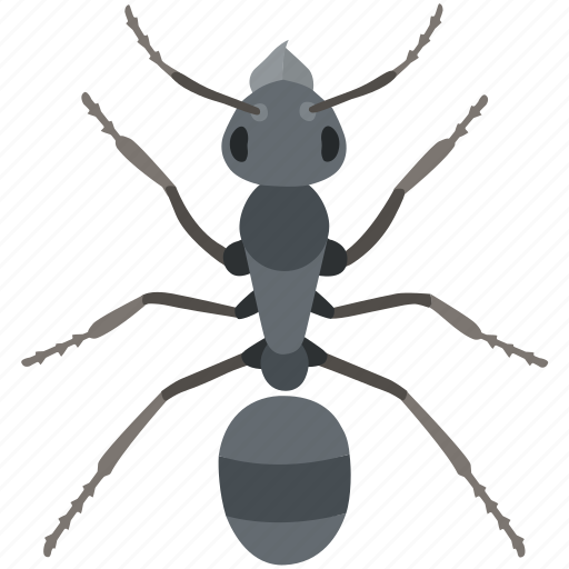 ant, green, insect, meat, pest, red, worker icon