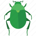 bug, dung, egypt, egyptian, ra, scarab beetle icon