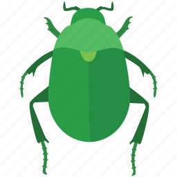 bug, dung, egypt, egyptian, ra, scarab beetle icon