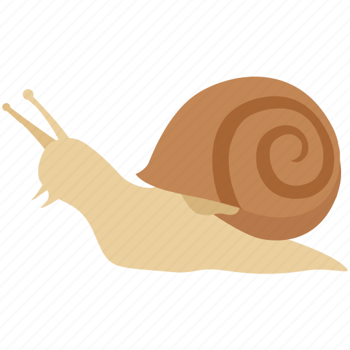 escargot, freshwater, land, mollusc, sea, slow, snail icon