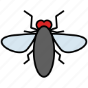 fly, housefly, insect, insects, pest icon