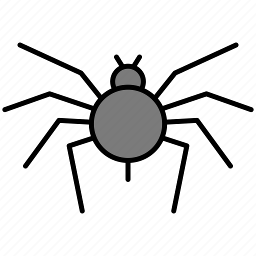 bug, fly, insect, insects, pest, spider icon