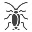 cockroach, insect, pest, roach