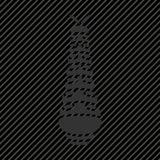 animal, bug, caterpillar, insect, larva, pest, worm icon
