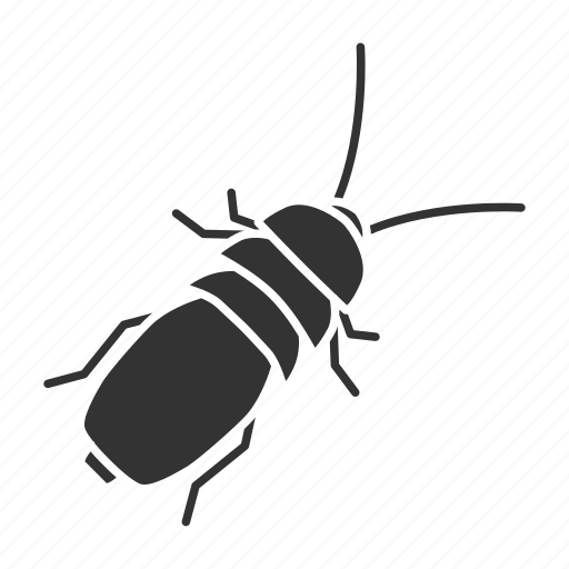 beetle, bug, insect, pest, pinacate, stink, stinkbug icon