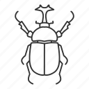 animal, beetle, bug, dynastes, hercules, insect, rhinoceros icon