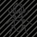beetle, bug, deer, insect, lucanus, servus, stag icon