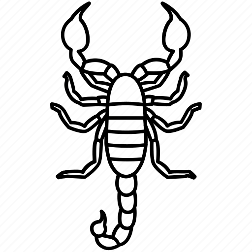 animal, arachnid, deadly, scorpio, scorpion, serket, tattoo icon