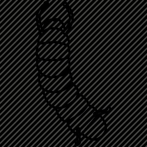 caterpillar, grub, inchworm, larva, looper, silkworm, worm icon