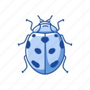 animal, bug, insects, lady beetle, lady bird, lady bug icon