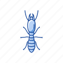 animal, body lice, head lice, insects, pest, termites icon