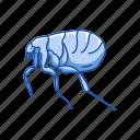 animal, bloodsucker, flea, fleas, insects, parasite icon