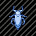 animal, beetle, hercules beetle, insect, rhinoceros beetle, unicorn beetle icon