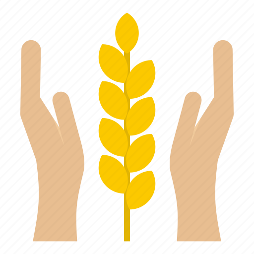 corn, farm, flour, grain, spica, spike, wheat icon