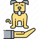 dog, doggy, insurance, pet, pet insurance, pup, puppy icon