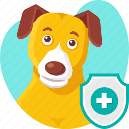 animal, dog, insurance, medical, pet, policy, protection