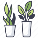 green, houseplant, leaf, nature, plant, plants, pot icon