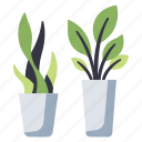 nature, houseplant, leaf, pot, green, plants, plant icon
