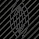 internal, muscle, organs icon