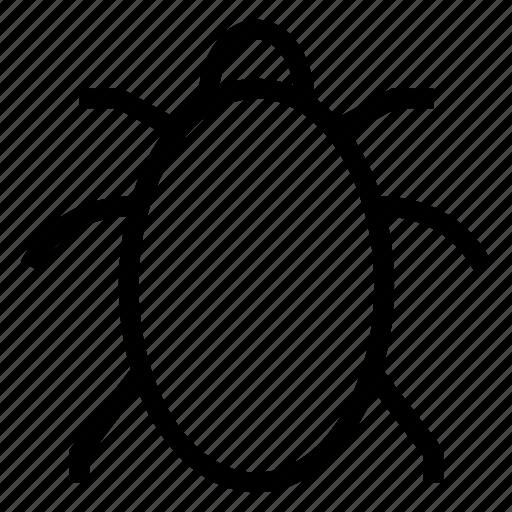 antivirus, bug, bugllet, ladybug, magnifier, nature, spam icon