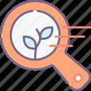organic, search, seo icon