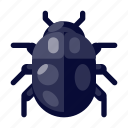 bug, communication, computer, internet, security, technology