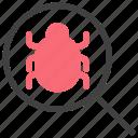 bug, code, error, internet, malware, security, website