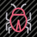 bug, fly, insect, malware, virus