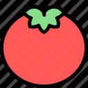 country, europe, fashion, italy, tomato icon