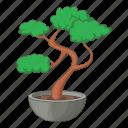 bonsai, japanese, nature, tree icon