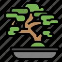 asia, bio, bonsai, green, japan, plant