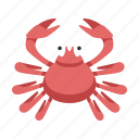 crab, cuisine, japan, japanese crab, kani, restaurant, seafood