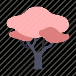 flower, japan, nature, sakura, sakura tree, spring, tree icon