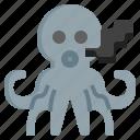 squid, octopus, cephalopods, invertebrate, aquarium