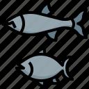 fish, food, restaurant, eat, meat