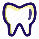 dentist, medical, medicine, teeth, tooth icon