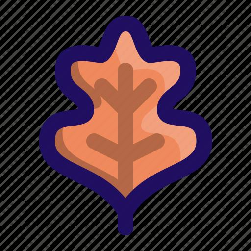 feather, leaf, lettuce, oak, thanksgiving icon