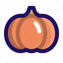 agriculture, autumn, halloween, pumpkin, thanksgiving icon