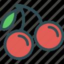 cherry, drink, food, grocery, kitchen, restaurant icon