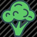 broccoli, drink, food, grocery, kitchen, restaurant icon