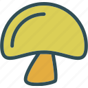 drink, food, grocery, kitchen, mushroom, restaurant icon