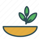 bowl, greens, herb, plant icon