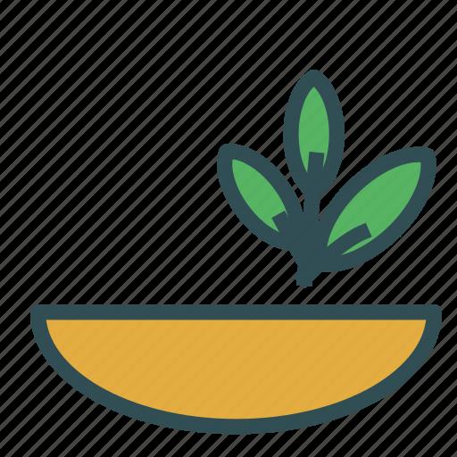 bowl, greens, herb, plant icon