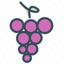 food, fruit, grapes, healthy, sweet icon