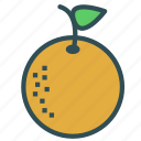 food, fruit, healthy, orange, sweet icon
