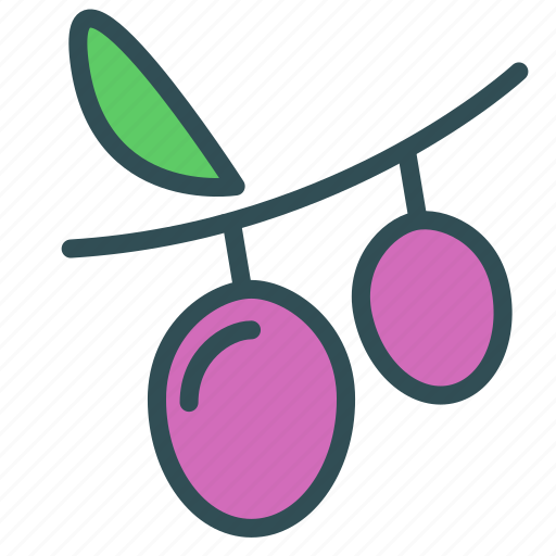 fruit, healthy, prunes, sweet icon